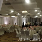 Wedding-Decoration-Backdrop-Draping-Kim-Son-Bellaire-A-Particular-Event