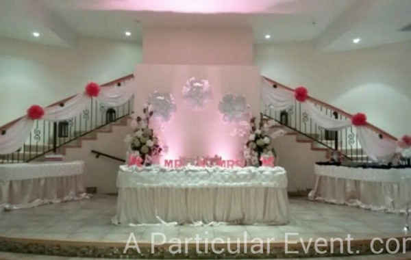 Wedding in La Fontaine Reception Hall, Houston TX